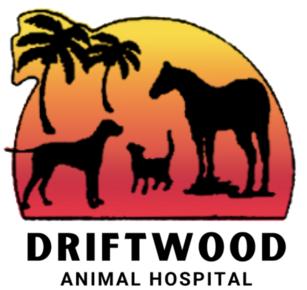 Driftwood Animal Hospital: Home