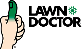 Lawn Doctor Denver: Home