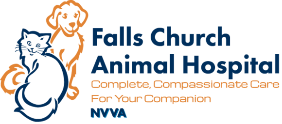 Falls Church Animal Hospital: Home