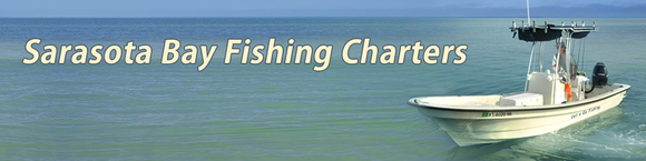 Sarasota Bay Fishing Charters: Home