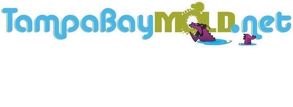 TampaBayMold.net: Home