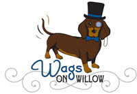 Wags on Willow Review: Home