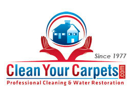 Clean Your Carpets Inc: Home