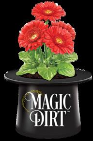 Magic Dirt Soil: Home
