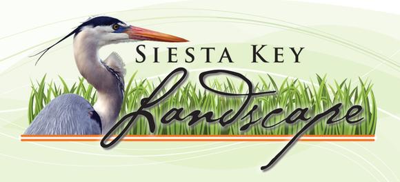 Siesta Key Landscape: Home