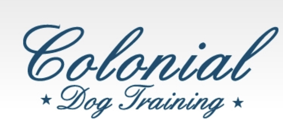Colonial Dog Training: Home
