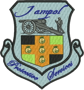 Jampol Protective Services: Home