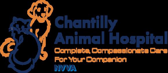 Chantilly Animal Hospital: Home