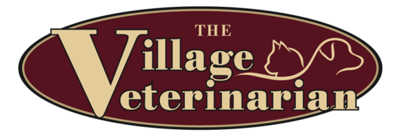 The Village Veterinarian: Home