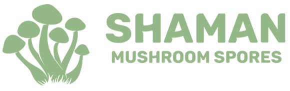 Shaman Mushroom Spores: Home