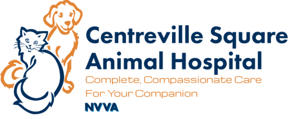 Centreville Square Animal Hospital: Home