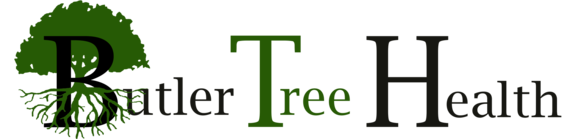 Butler Tree Health: Home