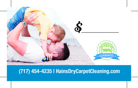 Hains Dry Carpet Cleaning: Home