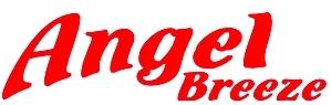 DISH: Angel Breeze Services