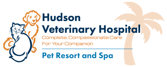 Hudson Veterinary Hospital Pet Resort and Spa: Home