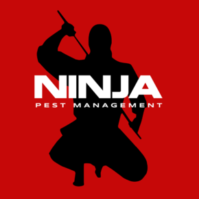 Ninja Pest Management: Home