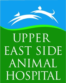 Upper East Side Animal Hospital: Home