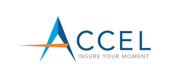 The Accel Group (formerly Asset Pros): Home